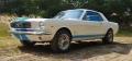 Wynajmę Forda Mustanga z 1966