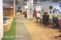 Duży coworking, biuro przeszklone, drzewa wewnątrz, kuchnia, kino, sale konferencyjne
